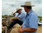 Cramsie saleyards – Keith Morton, Richard Simpson & Bruse McClymont